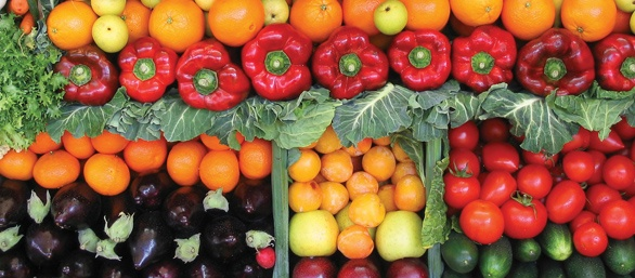 Photo of assorted vegetables.